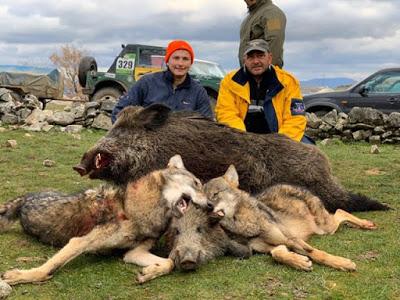 Тийнейджър повали огромен глиган, колегата му думна вълци!