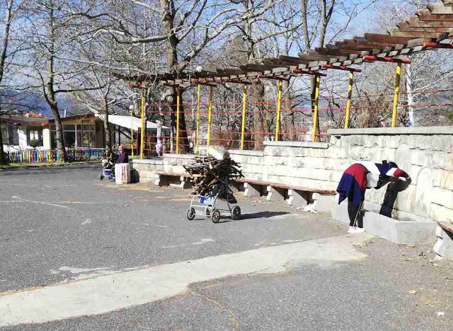 Детските колички пълни с… дърва!