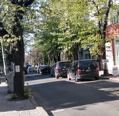 Ден №42: Пълно с автомобили, хора няма