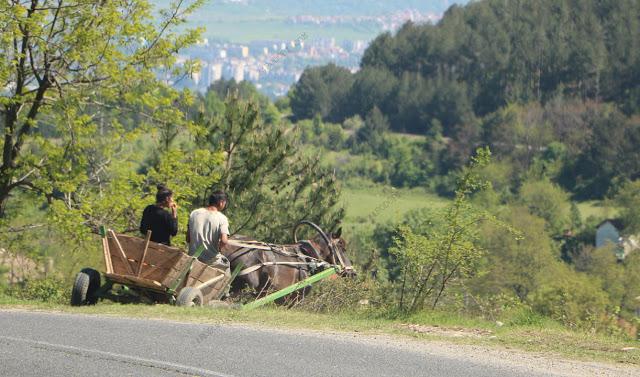 """40.4% от населението в Кърджалийско е """"градско"""", №1 сме в категорията """"селски области"""""""