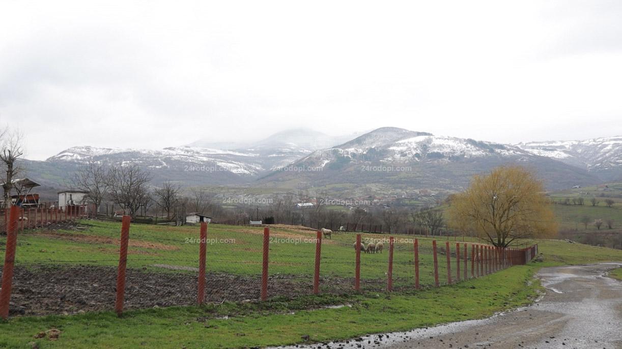 ВИДЕО: Горе сняг, долу зелено – Родопите едновременно в два сезона