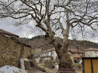 Селото, в което всичко е история…