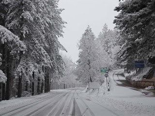 15 сантиметра сняг покри Ардинско(снимки)