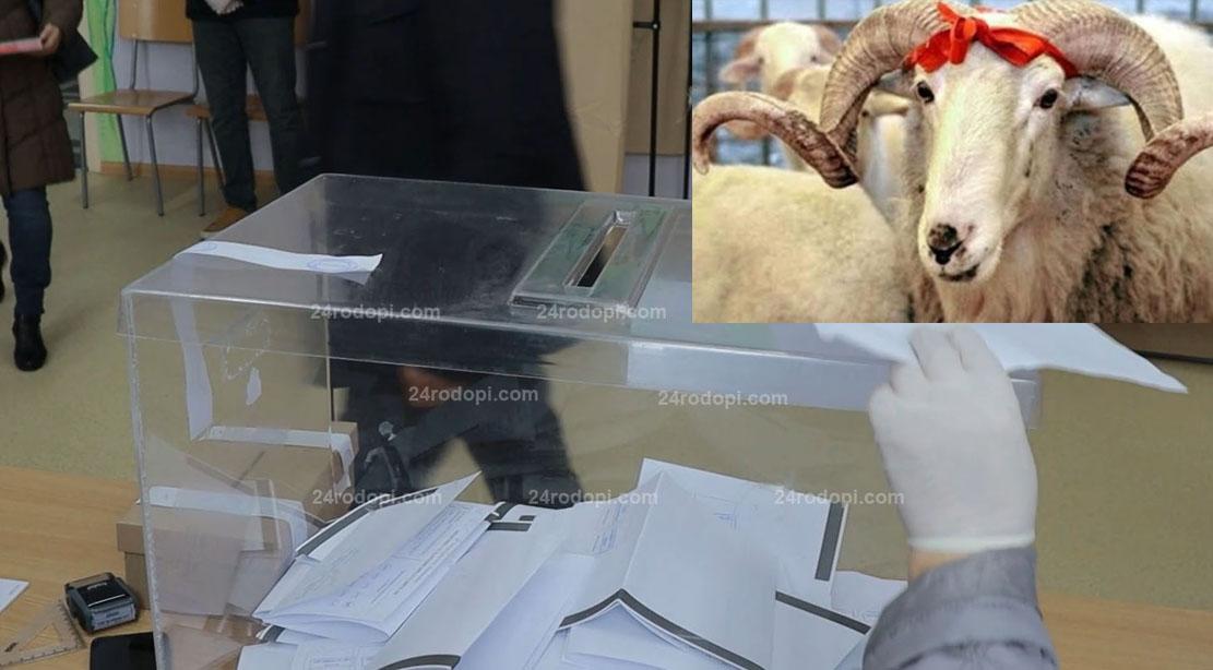 Ако изборите са на 18 юли, ДПС си гарантира 4-тия мандат в Кърджали!?
