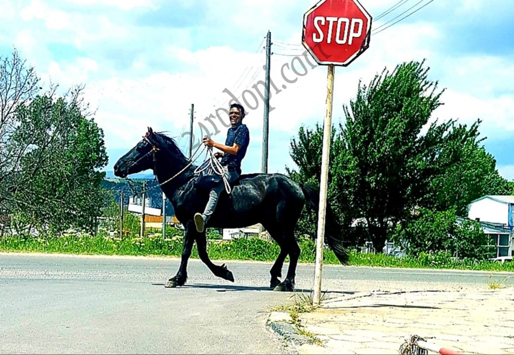Нищо не може да спре волния ездач…