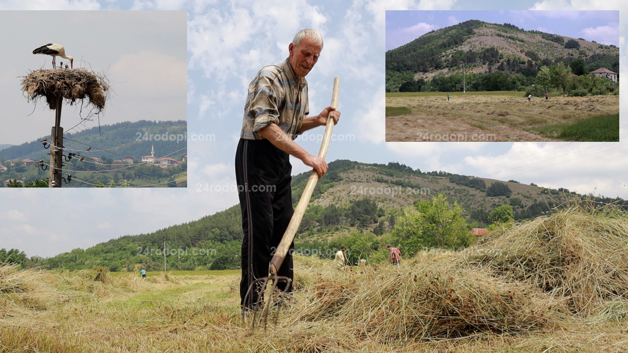ВИДЕО репортаж: Програмата на бай Хасан заради внуците в София