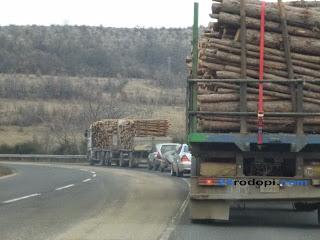 """Горски №1 в Родопите: Схемата """"дърва срещу глас"""" трябва да се докаже на място със служител и потърпевш!"""
