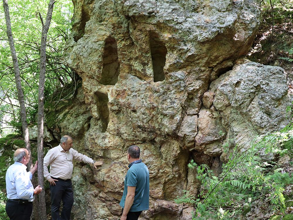 Лесничей откри неизследвани скални ниши