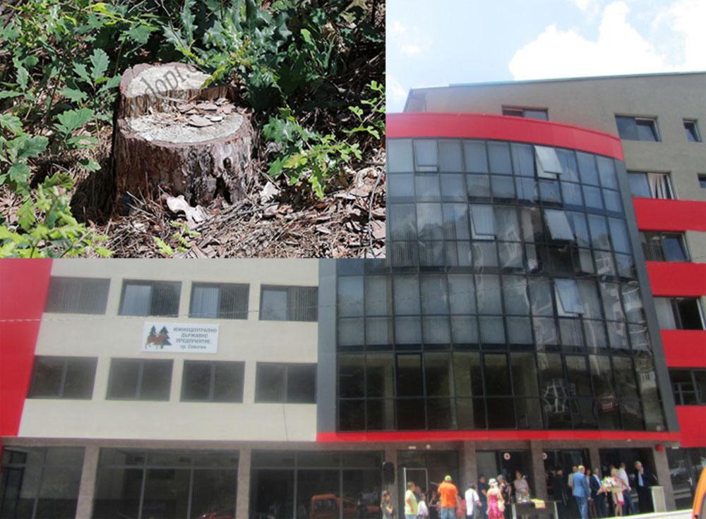 Новото ръководство на ЮЦДП пое властта, започват рокади в горските стопанства!