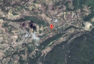 32-годишен блъсна куче в Горно Къпиново, 40-годишен удари сърна край Загорско