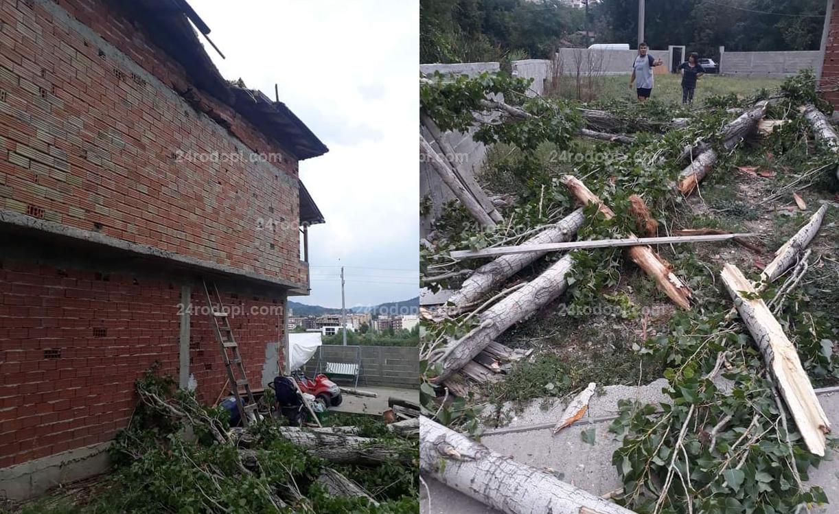 Огромно дърво падна върху къща в Кърджали! (снимки)