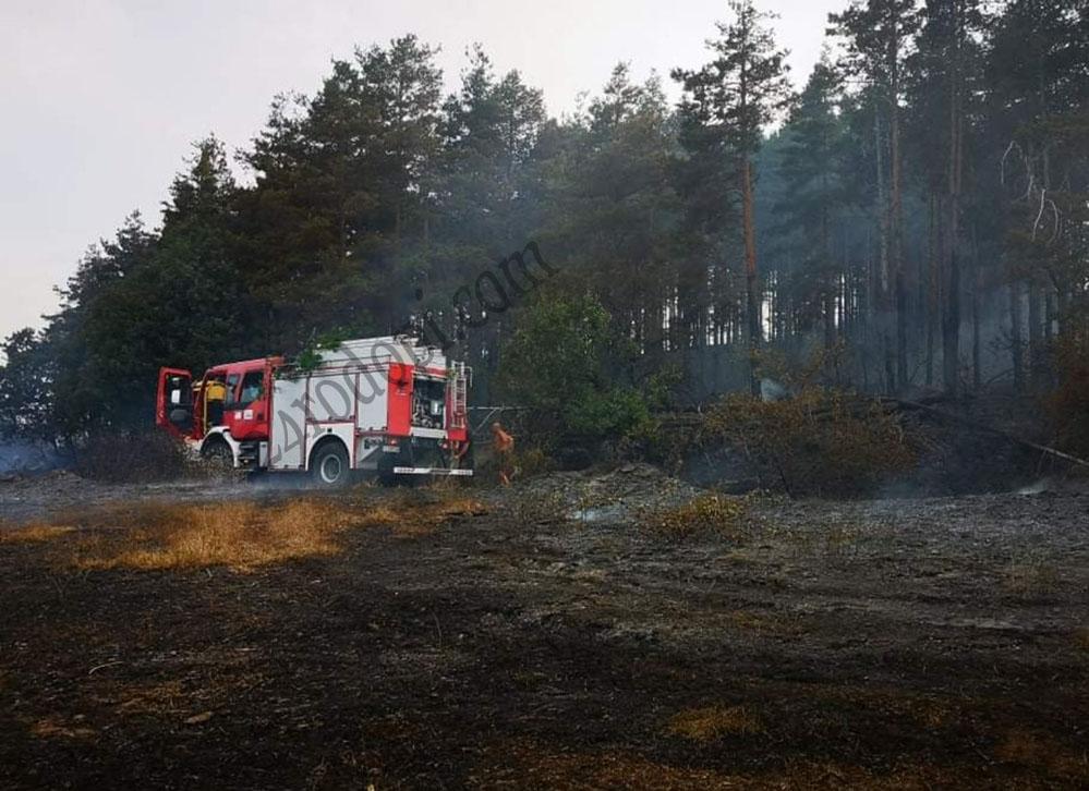 Пожарът край Яребица унищожи 146 дка гора и 250 дка треви – пламъците са потушени, дежурството приключва!