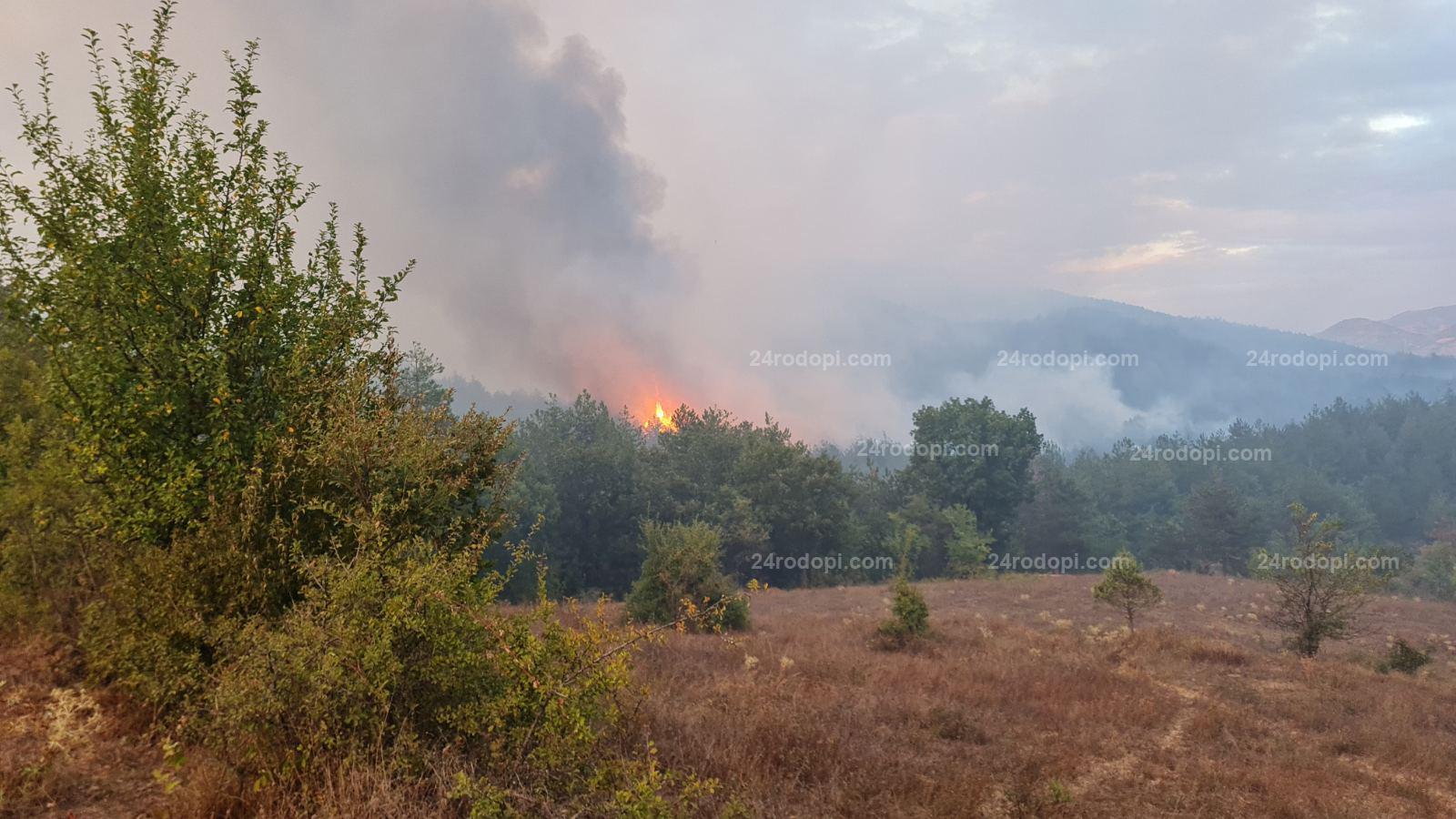 ВИДЕО: Вятър със скорост 61 км/ч и огнен ад край Старово и Самодива! Десетки срещу стихията