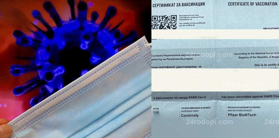 След скандала в Гърция, разкритие пред 24rodopi.com: Фалшивите сертификати за ваксиниране идват от София, цената  – 300 лева!