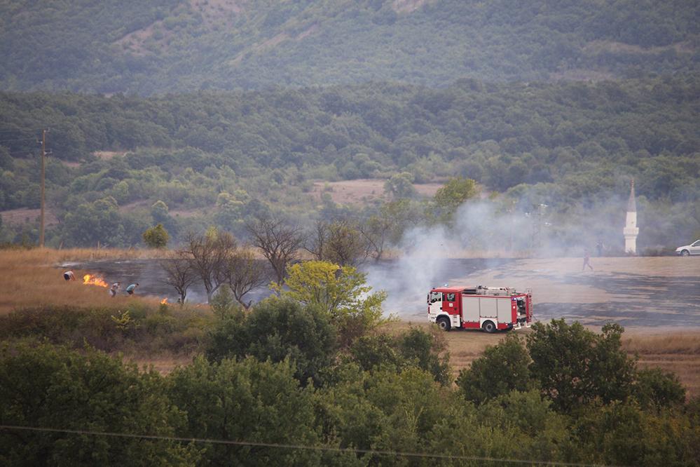 Тревата стана на пепел край Пепелище
